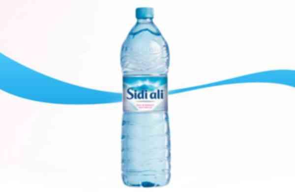 Sidi Ali 1.5L